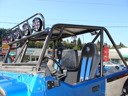 TJ Cage with PRP Seats & aluminum roof